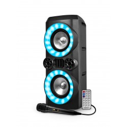 Diffusore amplificato 700W CREED 266